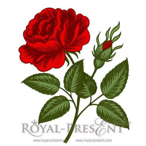 Дизайн машинной вышивки Роза в стиле гравюры викторианской эпохи - 2 размера